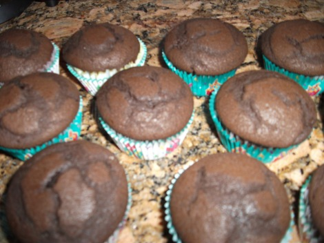 Dark Chocolate Cupcakes with Vanilla Buttercream Frosting